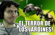 El terror del jarín! | Empires of the Undergrowth